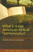 What Is Asian American Biblical Hermeneutics?: Reading the New Testament - Liew, Tat-Siong Benny