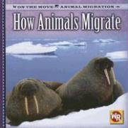 How Animals Migrate - Labella, Susan