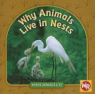 Why Animals Live in Nests - Weber, Valerie J.