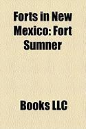 Forts in New Mexico: Fort Sumner