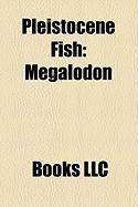 Pleistocene Fish: Megalodon