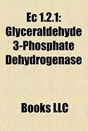 EC 1.2.1: Glyceraldehyde 3-Phosphate Dehydrogenase, Aldh2, Pyruvate Dehydrogenase Complex, Aldehyde Dehydrogenase, Acetaldehyde