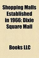Shopping Malls Established in 1966: Dixie Square Mall