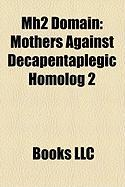 Mh2 Domain: Mothers Against Decapentaplegic Homolog 2