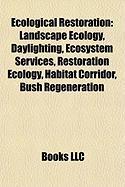 Ecological Restoration: Daylighting