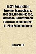 EC 3.1: Restriction Enzyme