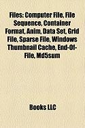 Files: Computer File