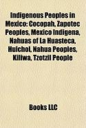 Indigenous Peoples in Mexico: Mexico Indigena