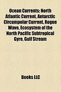 Ocean Currents: Rogue Wave