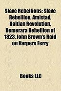 Slave Rebellions: Slave Rebellion, Amistad, Haitian Revolution, Demerara Rebellion of 1823, New York Conspiracy of 1741
