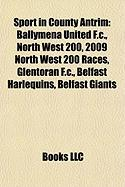 Sport in County Antrim: Ballymena United F.C.
