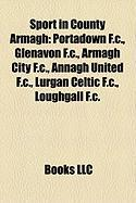 Sport in County Armagh: Portadown F.C.