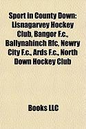 Sport in County Down: Lisnagarvey Hockey Club