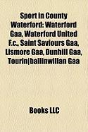Sport in County Waterford: Waterford Gaa