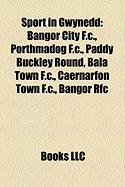 Sport in Gwynedd: Bangor City F.C.