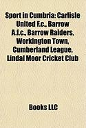 Sport in Cumbria: Carlisle United F.C.