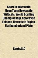 Sport in Newcastle Upon Tyne: Newcastle Wildcats