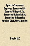 Sport in Swansea: Ospreys
