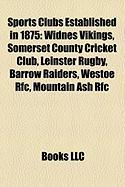 Sports Clubs Established in 1875: Widnes Vikings