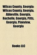 Wilcox County, Georgia: Abbeville, Georgia