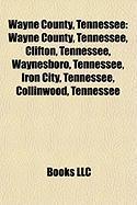 Wayne County, Tennessee: Nintendo Entertainment System
