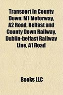 Transport in County Down: M1 Motorway