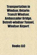 Transportation in Windsor, Ontario: Transit Windsor
