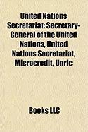 United Nations Secretariat: Microcredit