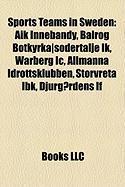 Sports Teams in Sweden: Aik Innebandy