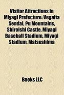 Visitor Attractions in Miyagi Prefecture: Vegalta Sendai