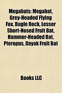 Megabats: Grey-Headed Flying Fox
