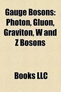 Gauge Bosons: Photon