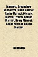 Marmots: Groundhog, Vancouver Island Marmot, Alpine Marmot, Olympic Marmot, Yellow-Bellied Marmot, Hoary Marmot, Bobak Marmot,