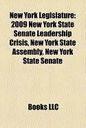 New York Legislature: 2009 New York State Senate Leadership Crisis, New York State Assembly, New York State Senate