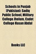 Schools in Punjab (Pakistan): Sadiq Public School, Military College Jhelum, Cadet College Hasan Abdal