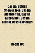 Cassia: Golden Shower Tree, Cassia Aldabrensis, Cassia Aubrevillei, Cassia Fikifiki, Cassia Artensis