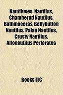 Nautiluses: Nautilus, Chambered Nautilus, Bathmoceras, Bellybutton Nautilus, Palau Nautilus, Crusty Nautilus, Allonautilus Perfora