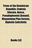 Trees of the Dominican Republic: Cedrela Odorata, Nance, Pseudophoenix Ekmanii, Hispaniolan Pine Forests, Dipholis Salicifolia