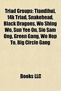 Triad Groups: Tiandihui, 14k Triad, Snakehead, Black Dragons, Wo Shing Wo, Sun Yee On, Sio Sam Ong, Green Gang, Wo Hop To, Big Circl