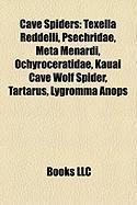 Cave Spiders: Texella Reddelli, Psechridae, Meta Menardi, Ochyroceratidae, Kauai Cave Wolf Spider, Tartarus, Lygromma Anops