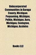 Unincorporated Communities in Baraga County, Michigan: Pequaming, Michigan, Pelkie, Michigan, Aura, Michigan, Covington, Michigan, Assinins