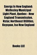 Energy in New England: Wellesley Municipal Light Plant, Quebec - New England Transmission, Nstar, Northeast Utilities, Keyspan, ISO New Engla