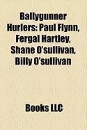 Ballygunner Hurlers: Paul Flynn, Fergal Hartley, Shane O'Sullivan, Billy O'Sullivan
