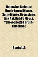 Deomyine Rodents: Brush-Furred Mouse, Spiny Mouse, Deomyinae, Link Rat, Rudd's Mouse, Yellow-Spotted Brush-Furred Rat
