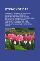 Pycnonotidae