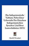 Das Indogermanische Verbum: Nebst Einer Uebersicht Der Einzelnen Indogermanischen Sprachen Und Ihrer Lautverhaltnisse (1873)
