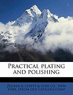 Practical Plating and Polishing