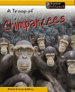A Troop of Chimpanzees - Spilsbury, Richard; Spilsbury, Louise A.