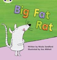Phonics Bug Big Fat Rat Phase 2