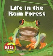 Life in the Rain Forest - Levete, Sarah